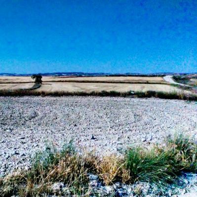 De Pina a Villamayor pasando por Leciñena